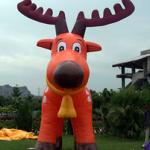 "Orange-Rain-Deer-Inf.-(1) • <a style=""font-size:0.8em;"" href=""http://www.flickr.com/photos/117154738@N03/21466505160/"" target=""_blank"">View on Flickr</a>"